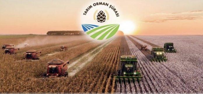 III. Tarım Orman Şûrası Sonuç Bildirgesi 18-21 Kasım 2019